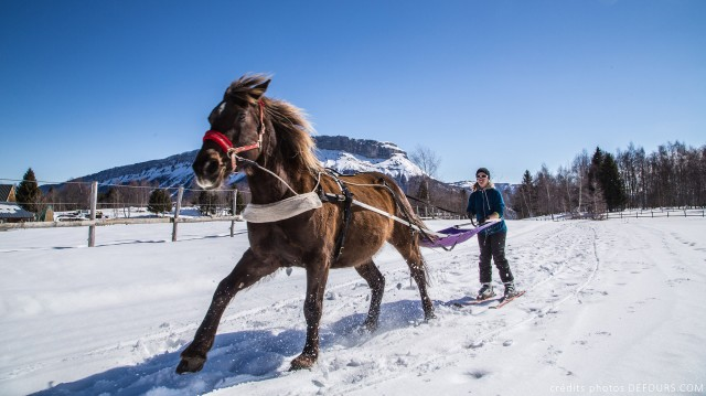 Ski Joering - Savoie Grand Revard