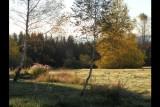 plateau de glaise à l'automne