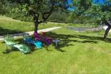 chaises longues sous les pommiers